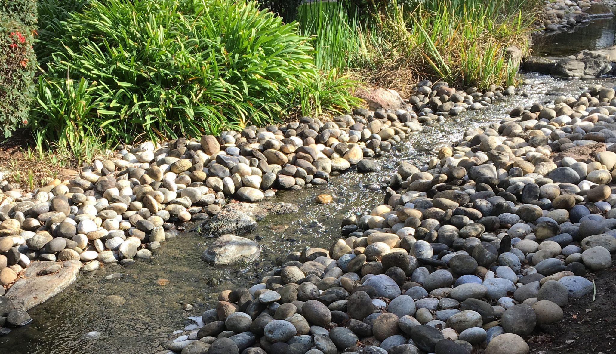 JFKU-creek