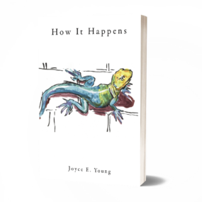 How+it+Happens+Cover